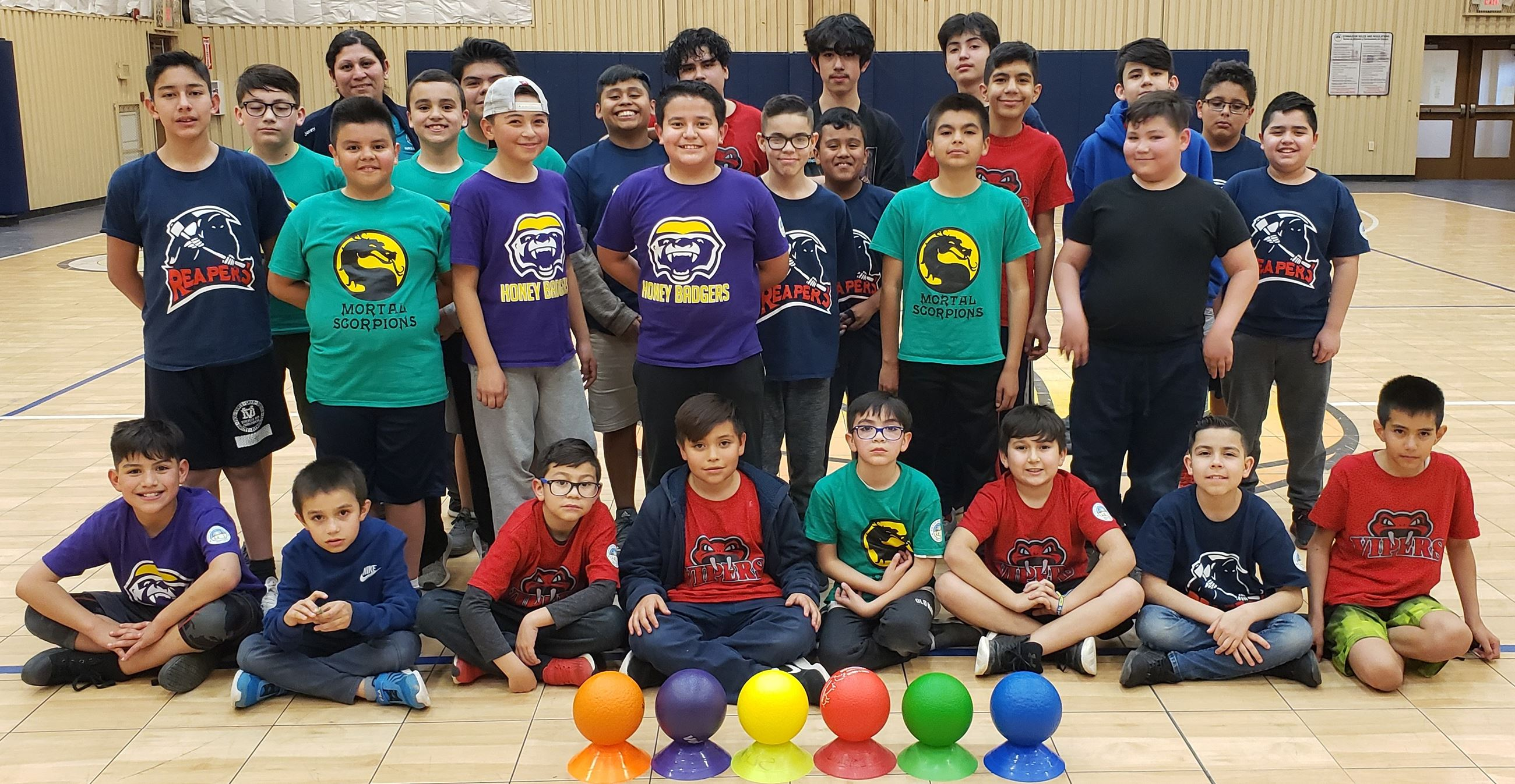 Youth Dodgeball Teams